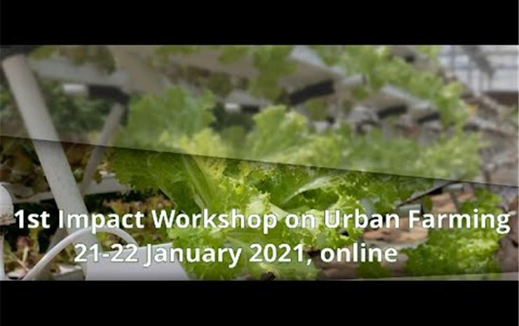 CityZen Impact Workshop 'Urban farming policy implications in the current  ...